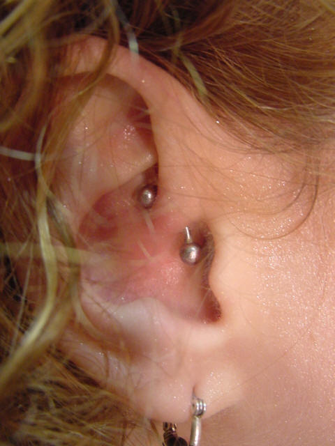 Daith Piercing Beaten To Death The Axiom Body Piercing Studio