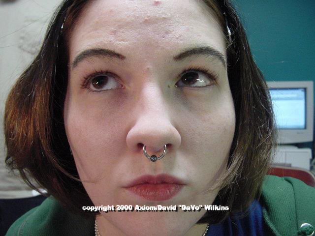 Septum Piercing Axiom Body Piercing Studio
