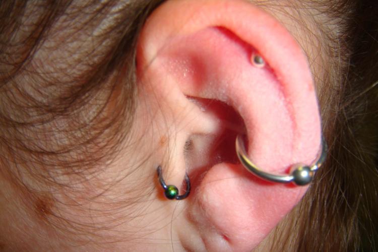 Horizontal Clitoral Hood Piercing Jewelry Axiom Body Piercing Studio